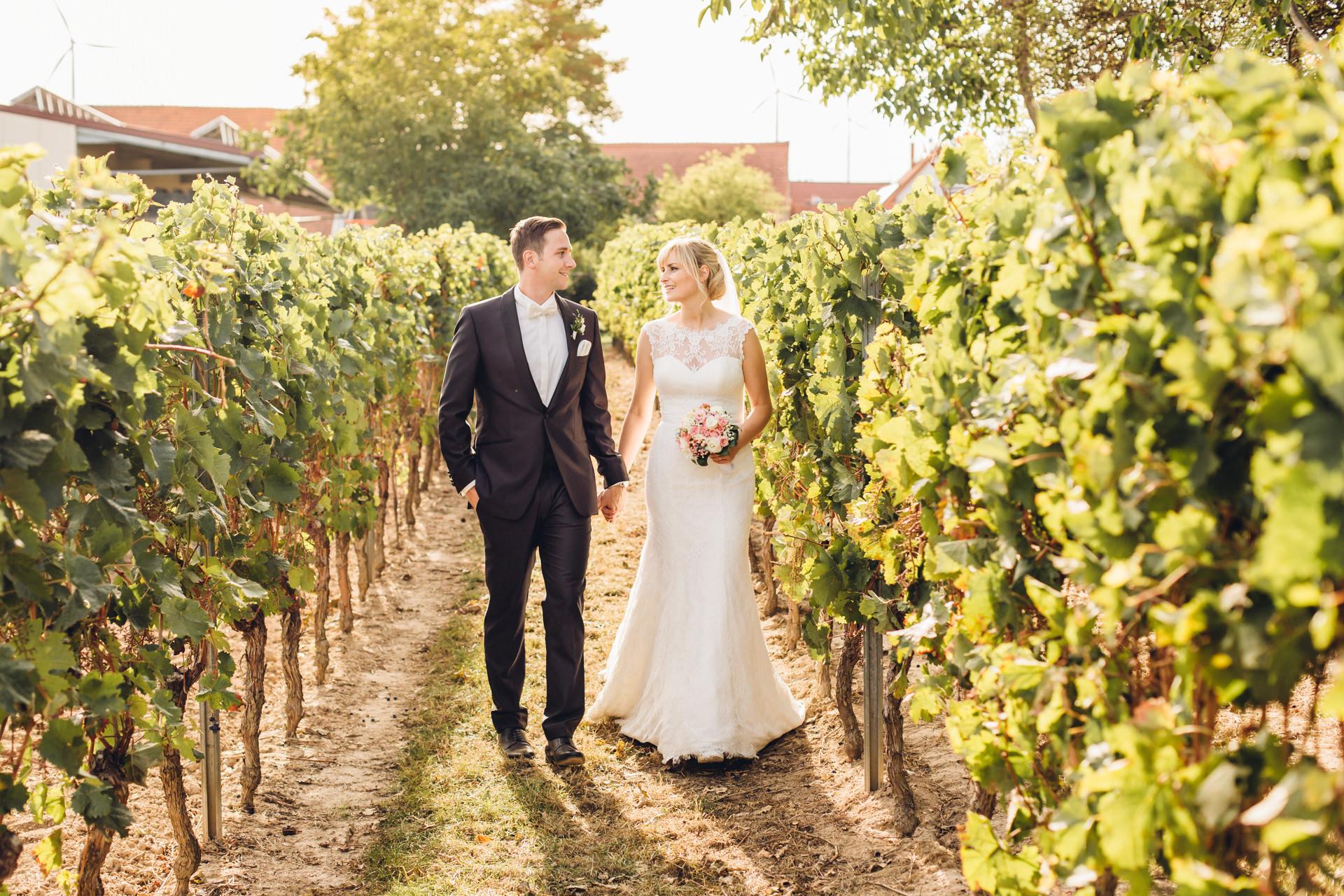 Hochzeit in den Weinbergen beim Weingewölbe San Martin in Bermersheim