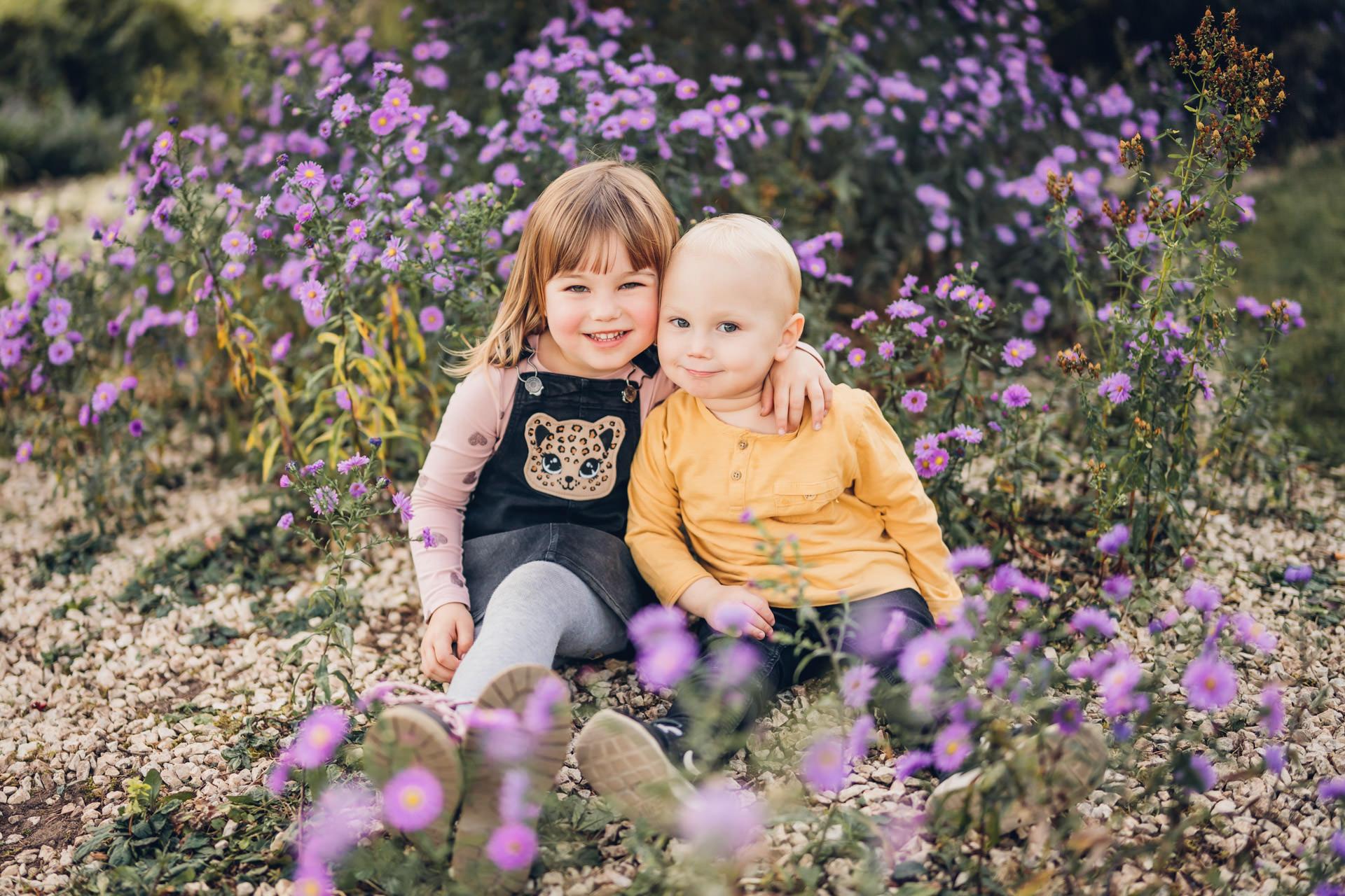 Geschwister im Rahmen eines Familienshooting in Pirmasens auf einer Blumenwiese im lila Blumenmeer