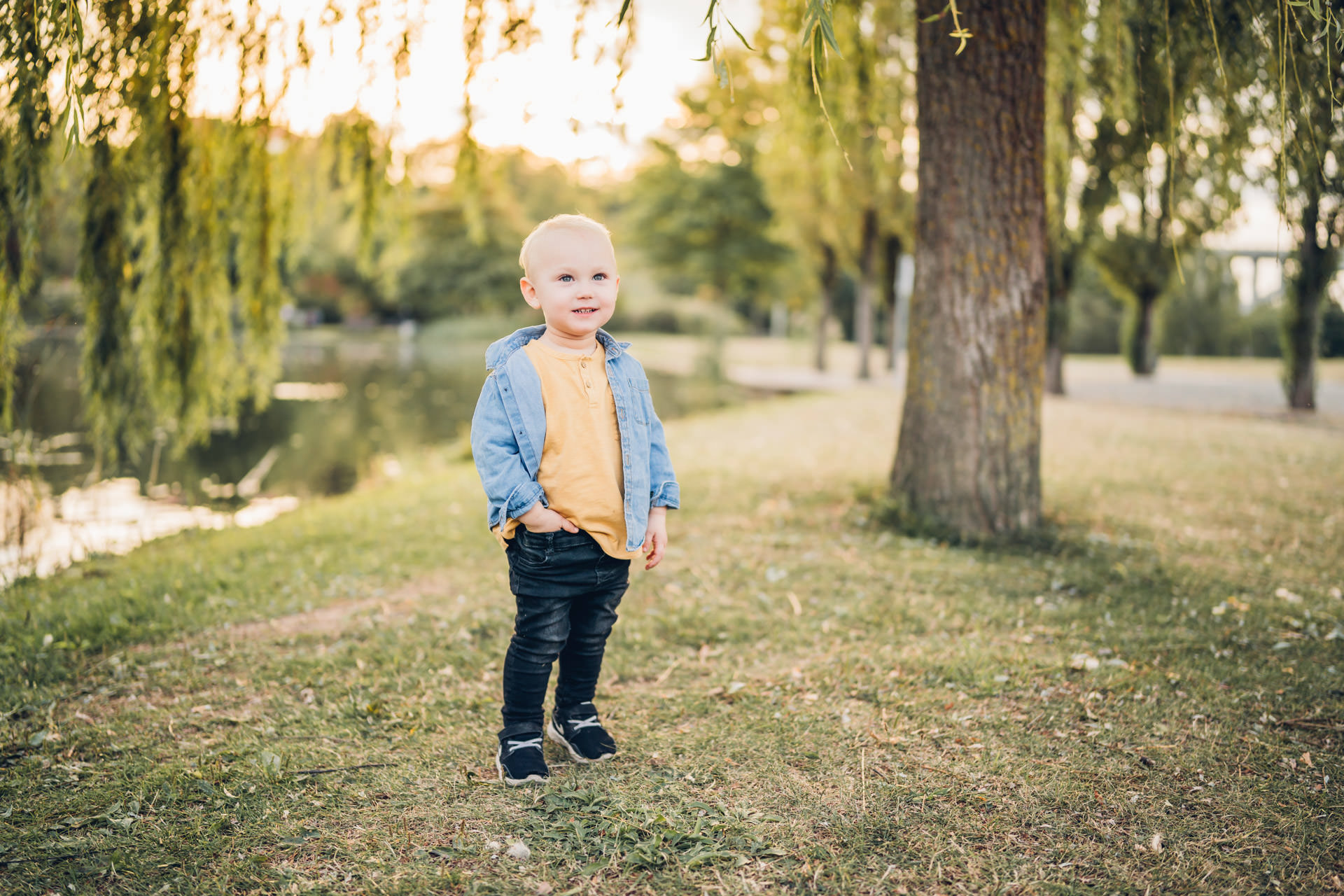 Dreijähriger in Jeanshemd am See im Strecktal Park in Pirmasens an einer Trauweide